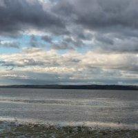Галичское озеро, вид. :: Александр Беляков
