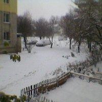 Зима! 2016. :: Миша Любчик