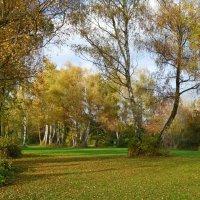 Уходит осень золотая....... :: Galina Dzubina