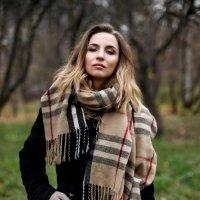 Последний день осени :: Татьяна Михайлова