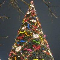 Ёлка на Красной площади :: Дмитрий Никитин