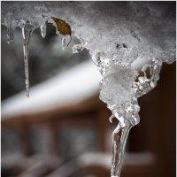 Вот и встретились осень и зима . зима в Новоглаголево. :: Игорь Абламейко