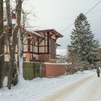 Снежный ноябрь 2 :: Виталий