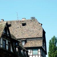 Корзина для аиста (на крыше) :: Надежда