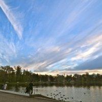 небо над Большим прудом :: Елена