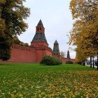 кремлевская стена :: Юрий