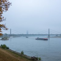 В тумане по Рейну :: Witalij Loewin