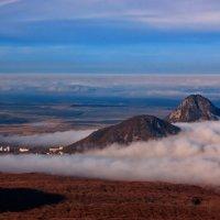 Туман :: Леонид Сергиенко