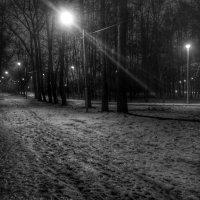 Парк :: Aleksandr Shishin