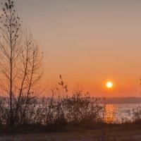 Утро :: Artem Zelenyuk