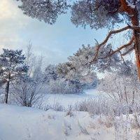 мороз крепчал... :: Олег Петрушов