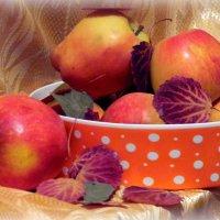 Осенние яблочки. :: nadyasilyuk Вознюк