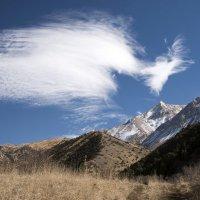 Души гор :: Александр Грищенко