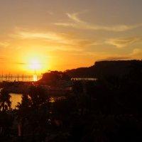 Утром солнышко встаёт ! :: Мила Бовкун