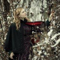 В заснеженном лесу :: Алексадр Мякшин