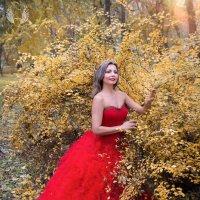 Царскою походкой вновь приходит Осень, :: Райская птица Бородина