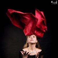Огненный цветок :: Виктор Зенин