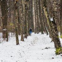 Еще не зима :: Владимир Безбородов