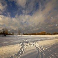 Поутру зимой проснувшись 3 :: Сергей Жуков