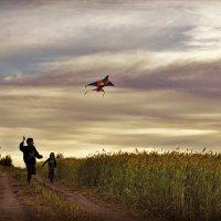 воздушный змей :: Екатерина Шарова