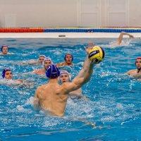 Тренировочный процесс :: Андрей Куприянов