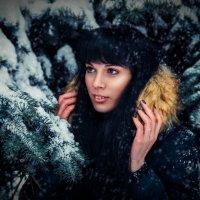 Зимняя 3 :: Анастасия Вознесенская