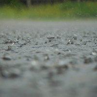 Дождик :: Алексей Василюк