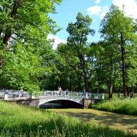 Парки Царского села :: Ольга