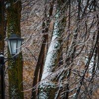 Фонарь и ледяной дождь -2 :: Владимир Безбородов