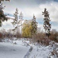 зимний пейзаж :: юрий иванов