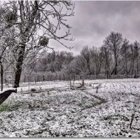 Снег... :: Александр