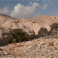 Пустыня Негев :: Lmark
