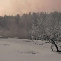 Морозно, над прудом туманчик вялый :: Сергей Жуков