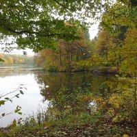 Закуток осеннего пруда :: Маргарита Батырева