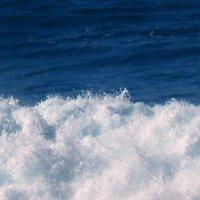 морская волна. :: Пётр Беркун