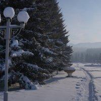 зима... :: Alexandr Staroverov