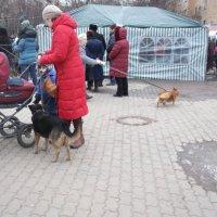 На городской площадке :: Svetlana Lyaxovich