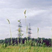 Природа и энергия :: Сергей Тарабара