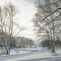 Снежный ноябрь 10 :: Виталий