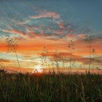 Sunset :: Женя Лузгин
