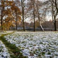 На зеленой траве :: Игорь Вишняков