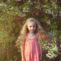 моя фея :: Наталия Полибина