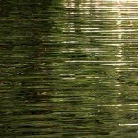 Золотые озёра..... :: Валерия  Полещикова