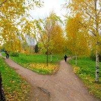 Осенние тропки. :: Александр Атаулин