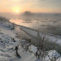 Ноябрьский туман. :: Сергей