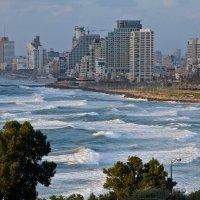 Тель-Авив :: Владимир Брагилевский
