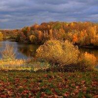 Внизу озера :: Alexander Andronik
