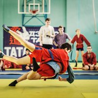 Победный бросок :: Вадим