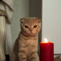 эта загадочная свеча.. :: Анна