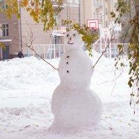 snowman :: Екатерина Белка